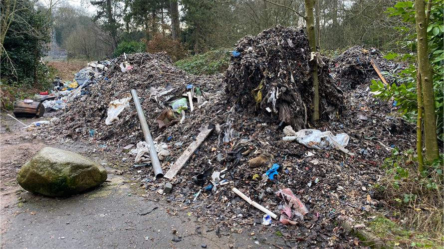 Wide spread litter in a woodland area